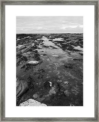Rock Pool Framed Print by Steve Watson