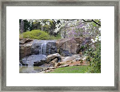 Rock Quarry Falls In Greenville Sc Cleveland Park Framed Print