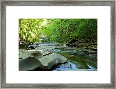 Rock Run #1 - Loyalsock State Forest Framed Print