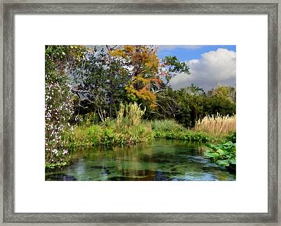 Rock Springs Framed Print by Bob Jackson