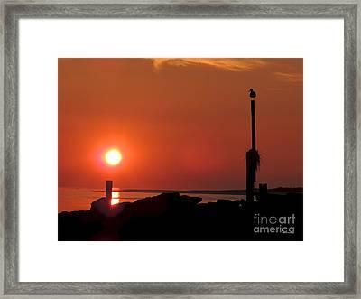 Rock Sun Bird Framed Print by Laurence Van Oliver