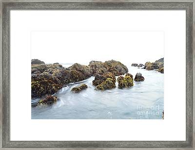 Rock The Seascape Framed Print by Sheldon Blackwell