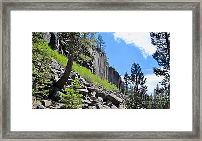Framed Print featuring the photograph Rocking by Marilyn Diaz