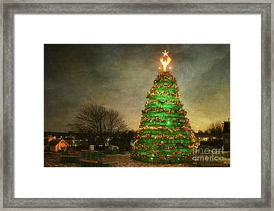 Rockland Lobster Trap Christmas Tree Framed Print