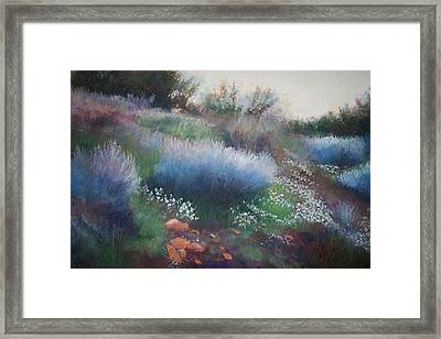 Rocks And Blooms Framed Print by Anita Stoll