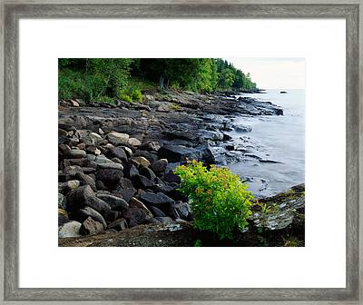 Rocks And Trees Along Lake Superior Framed Print by Panoramic Images