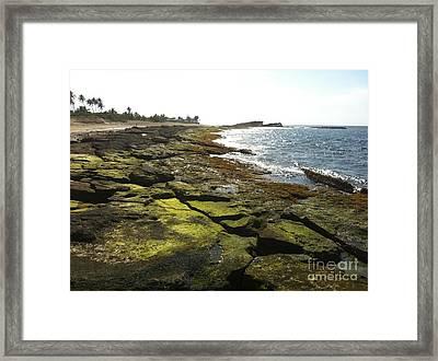 Rocks In Puerto Rico Framed Print by Sean Hughes