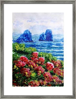 Rocks Of Capri Framed Print