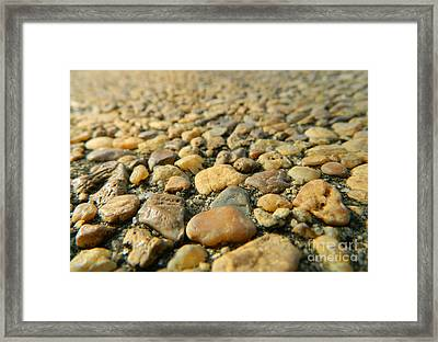 Rocks On My Path Framed Print by Andrea Anderegg