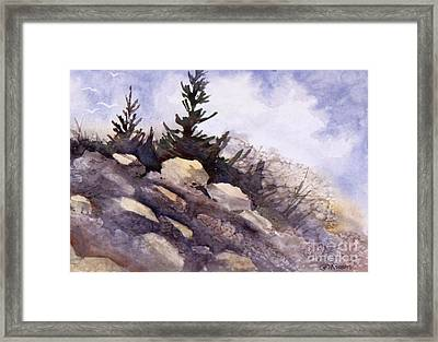 Rocks Framed Print by Teresa Ascone