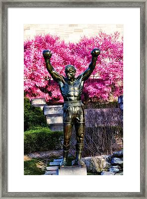Rocky Among The Cherry Blossoms Framed Print by Bill Cannon