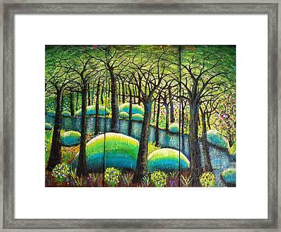 Rocky Creek Framed Print