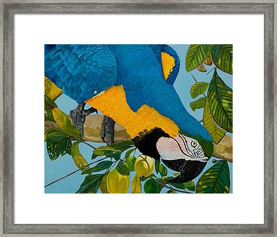 Rocky Framed Print by Manuel Lopez