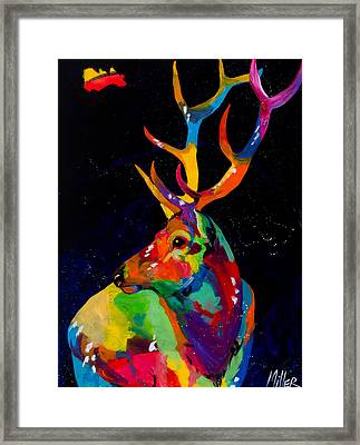 Rocky Mountain Elk Framed Print by Tracy Miller