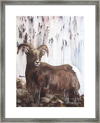 Rocky Mountain High Framed Print by Sharon Burger