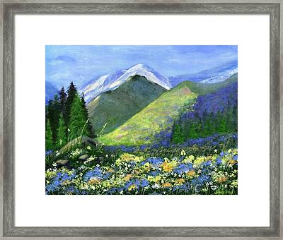 Rocky Mountain Spring Framed Print by Jamie Frier