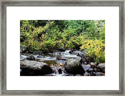 Framed Print featuring the photograph Rocky Mountain Stream by Jay Stockhaus
