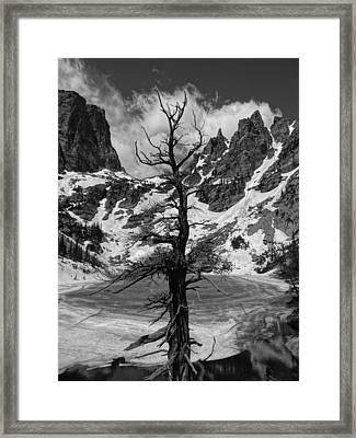 Rocky Mountains In Winter Framed Print