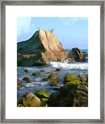 Rocky Ocean Coast Framed Print by Elaine Plesser