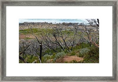 Rocky Outcrop Framed Print