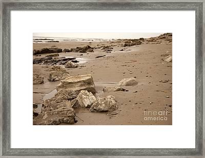 Rocky Shore Framed Print by Amanda Barcon