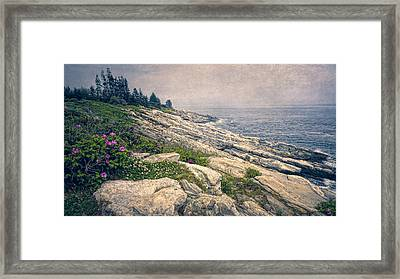Rocky Shore At Pemaquid Framed Print by Joan Carroll