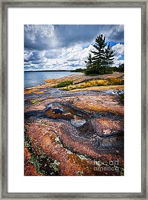 Rocky Shore Of Georgian Bay Framed Print by Elena Elisseeva