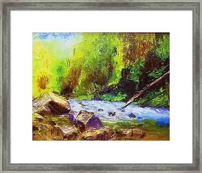 Rocky Stream Framed Print by Gail Kirtz
