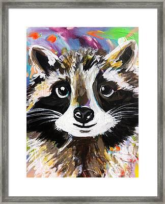 Rocky The Raccoon Framed Print by Kim Heil