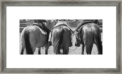 Rodeo Bums Framed Print by Michelle Wrighton