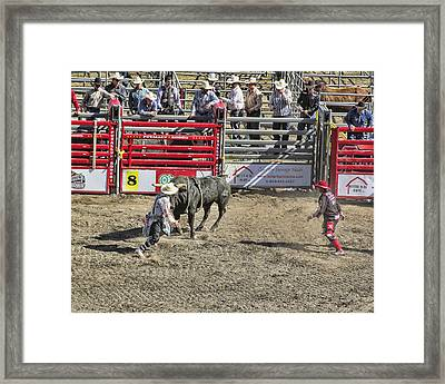 Rodeo Clowns At Work Framed Print by Ron Roberts