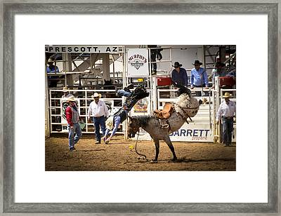 Rodeo High Flyer Framed Print by Jon Berghoff