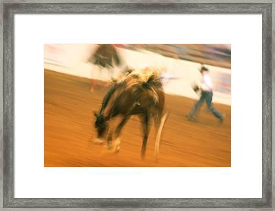 Rodeo Framed Print by Paulette Maffucci