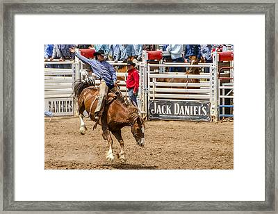Rodeo Ride Framed Print by Jon Berghoff