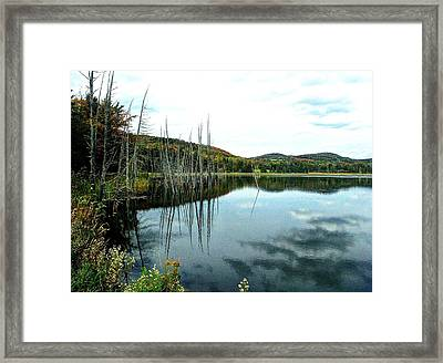 Rodgers Pond Framed Print