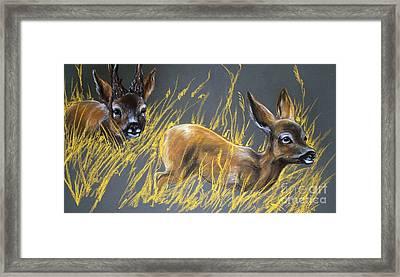 Roe Deer Framed Print by Angel  Tarantella