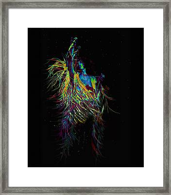 Roger Daltry At Woodstock Framed Print