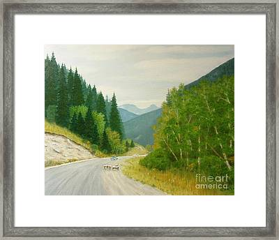 Rogers Pass Bc Framed Print