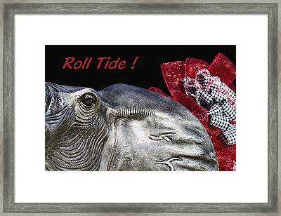 Roll Tide - 14 Time National Champions Framed Print by Kathy Clark