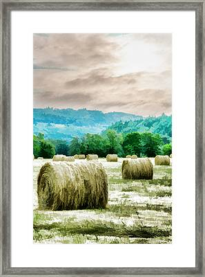 Rolled Bales Framed Print by Mick Anderson