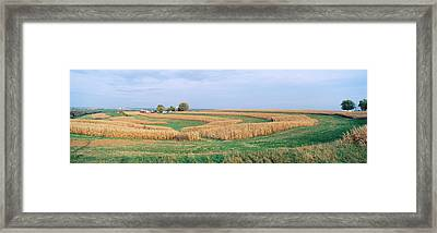 Rolling Farm Fields, North Of Dubuque Framed Print by Panoramic Images