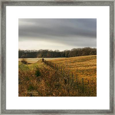 Rolling Field Framed Print by EricaMaxine  Price