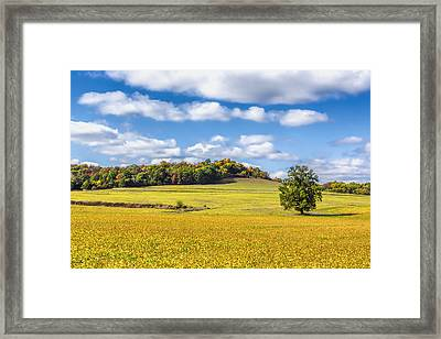 Rolling Fields Of Color Framed Print by Bill Tiepelman