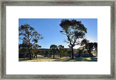 Rolling Green Sunrise Framed Print
