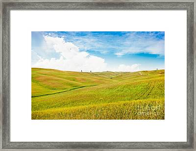 Rolling Hills In Tuscany Framed Print by JR Photography