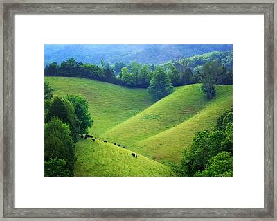 Rolling Hills Of Tennessee Framed Print