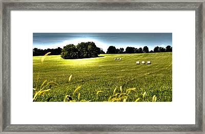 Rolling Pastures Framed Print