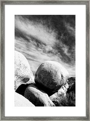 Rolling Stone Bw Joshua Tree Framed Print