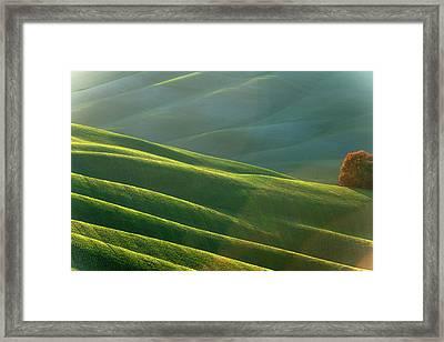Rolling Tuscany Landscape At Evening Framed Print by Pavliha