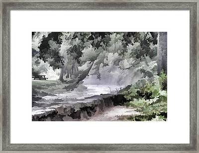 Rolling Waters Framed Print by Trish Tritz